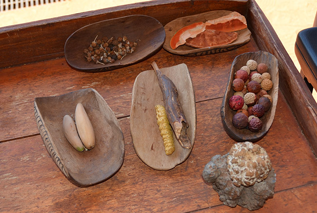 Types of indigenous spices and berries