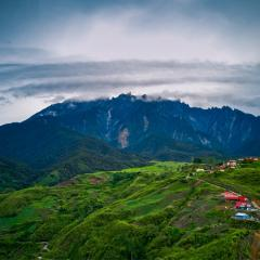 Green forests and a small village in front of Mount Kinabalu