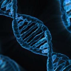 CRISPR Gene Editing Technologies