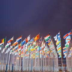 UN World Flags