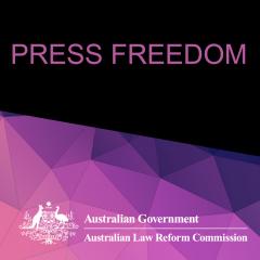 Press Freedom webinar floyer