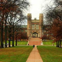 Washington University, St Louis, Missouri